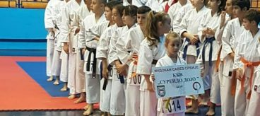 Sureido Bor karate