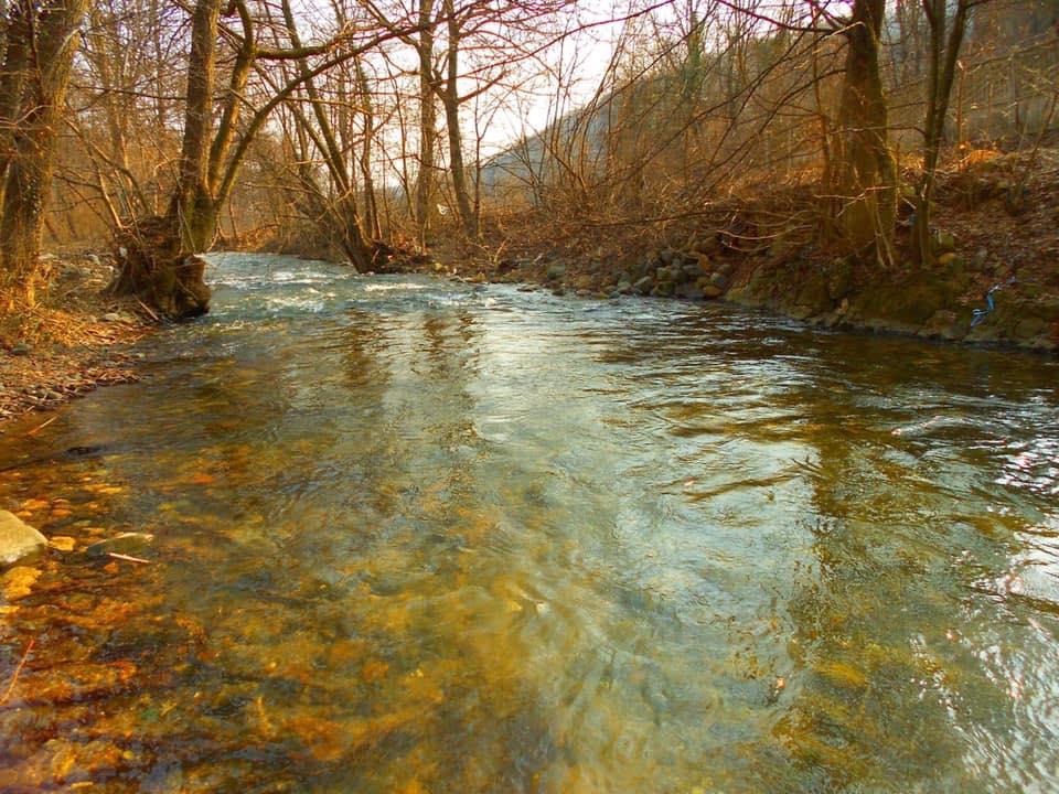 zlotska reka foto: Dejan Pastronjević
