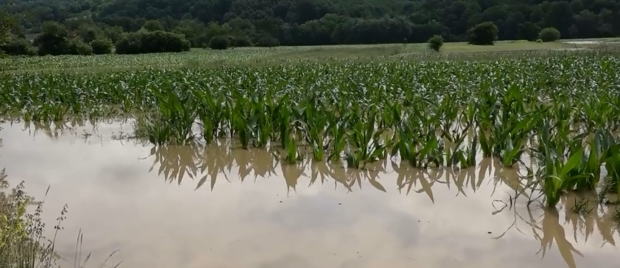 poplava krepoljin