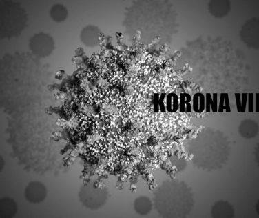 korona virus 2