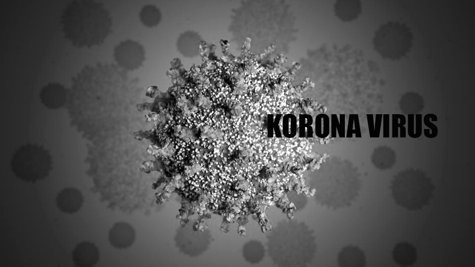 Trinaestoro izlečenih pacijenata a novih deset obolelih od Korona virusa u Rasinskom okrugu u poslednja 24 sata