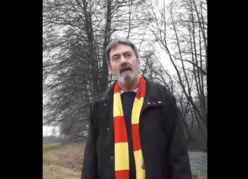 Miki Janošević