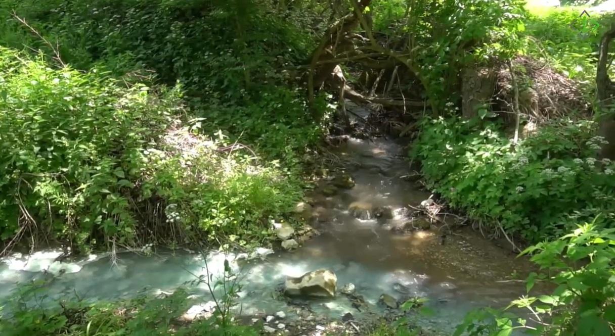 kriveljska reka